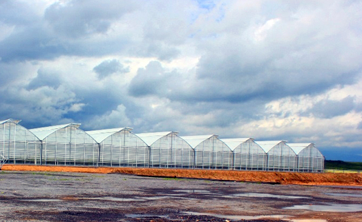 VTB Bank (Armenia) financed construction of progress agro hothouse in Geghi