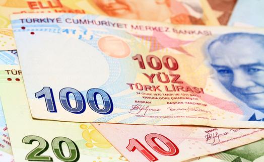 Турецкая лира упала до рекордного минимума после выборов в стране