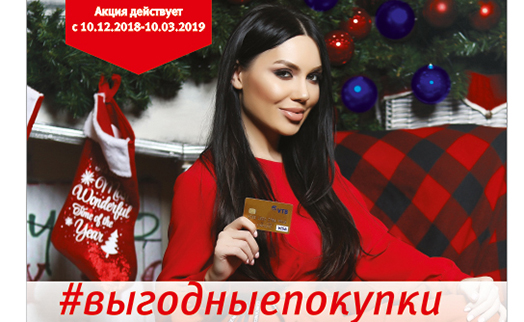 VTB Bank (Armenia), jointly with Visa International Payment System, launches new campaign called #newyearshopping