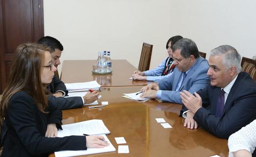 Вице-премьер представил делегации Fitch экономические реформы правительства Армении